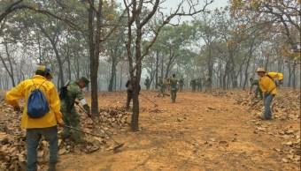 Reportan intensa temporada de incendios forestales en Yucatán y Q Roo