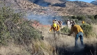 Bajo control, incendios forestales en Agua Prieta y Yécora, Sonora