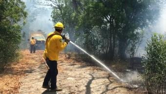 Alerta en Sonora por aumento de incendios forestales