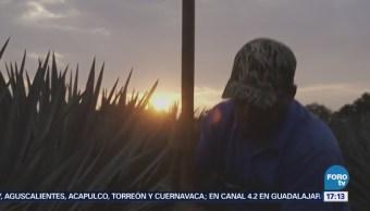 Jalisco apuesta por el campo el turismo