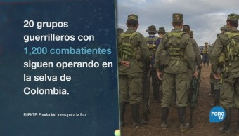 Guerrilla Colombiana Pasa Fronteras Las FARC