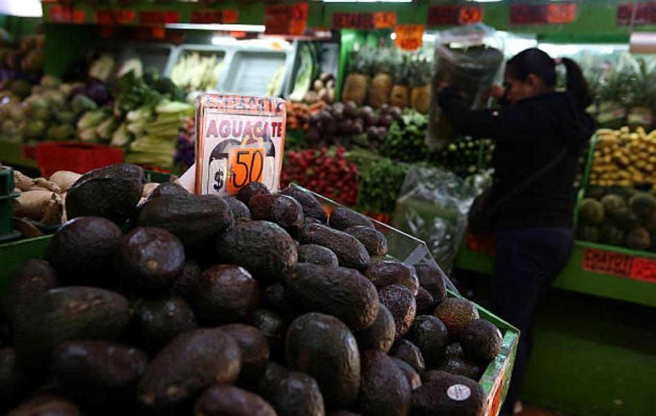 Precio del aguacate registra variaciones en mercados