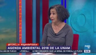 Invierte Poco Agenda Ambiental Señala Leticia Merino