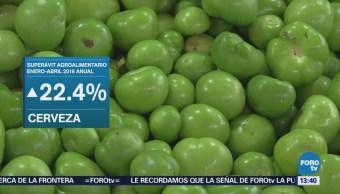 Balanza Comercial Agroalimentaria Mantiene Sagarpa