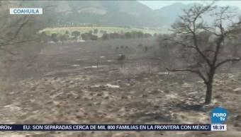 Continúa Incendio Forestal Límites Nl Coahuila