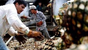 Disminuye desocupación en México a 3.2%: INEGI