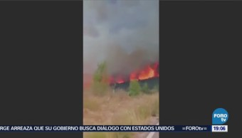 Incendio Forestal Predio Arteaga Coahuila Ecología