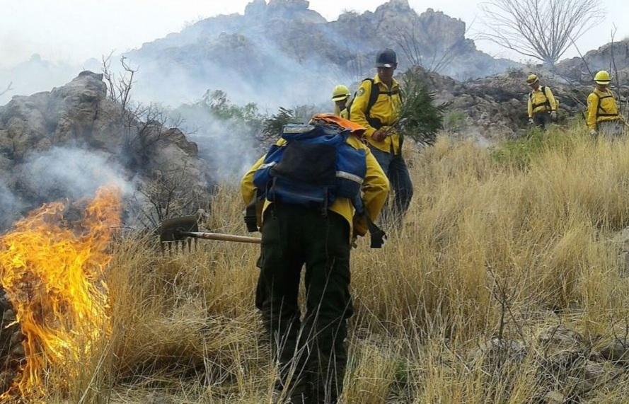Incrementan incendios por ola de calor en Sonora