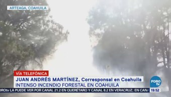 Intenso Incendio Sierra Arteaga Coahuila Ecología
