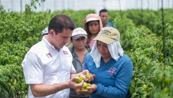 Mauricio Sahuí presentó plan verde para Yucatán