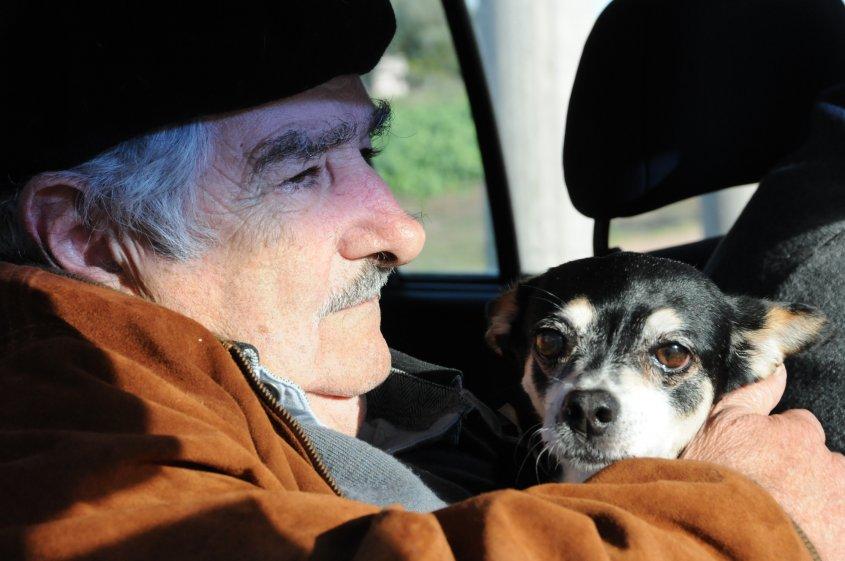 Muere Manuela perrita expresidente uruguayo josé Mujica