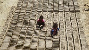 OIT urge a erradicar trabajo infantil peligroso