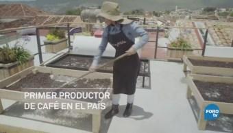 Yo Soy Industria Chiapas 1 De Julio