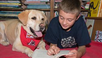 Perros y Letras, un programa pionero en Espana