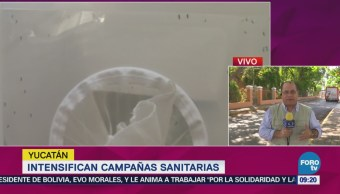 Intensifican Campañas Sanitarias Yucatán Alejandro Sánchez Reporta