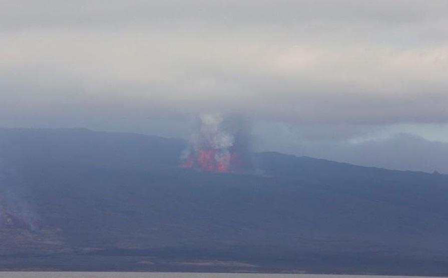 Erupción de un volcán en Galápagos obliga la evacuación de sectores cercanos