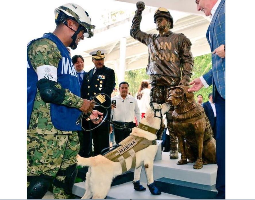 develan estatua perrita frida puebla