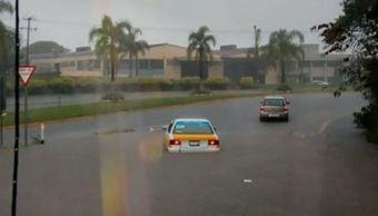 Lluvia provoca inundaciones y caída de árboles en Veracruz
