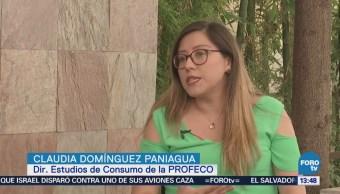 Remesas Principales Ingresos Económicos México