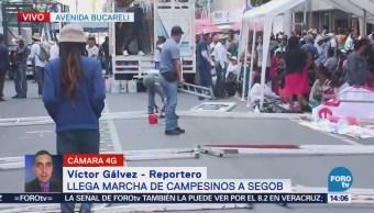 Manifestantes Montan Campamento Avenida Bucareli Cdmx