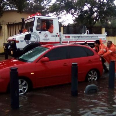 Lluvias en Morelia provocan caída de árboles y encharcamientos