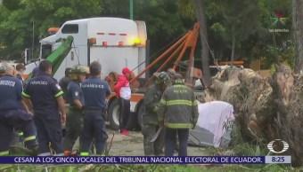 Mueren cuatro personas tras caerles un árbol en Echegaray, Edomex