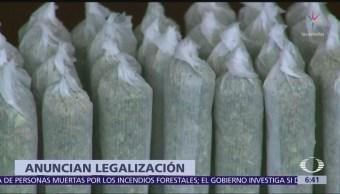 Reino Unido autoriza marihuana con uso terapéutico