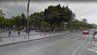 Reportan caída de árbol en la Alameda Central, CDMX