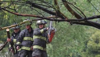 vecinos naucalpan exigen dictamen arboles riesgo caer