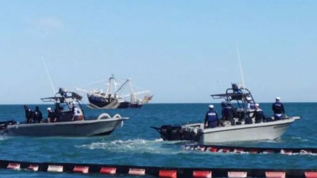 Aplican operativos para evitar pesca de especies en peligro de extinción