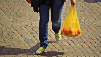 En Querétaro Vigor Prohibición Bolsas Plástico