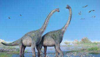 un-fosil-recien-descubierto-podria-reescribir-historia