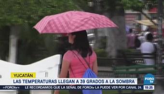 Yucatán Resiente Efectos Canícula