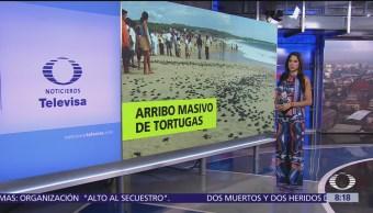 Al aire con Paola Rojas Programa del 16 de agosto del 2018