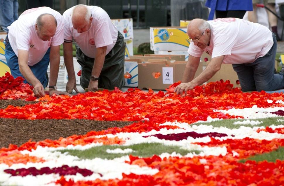 tapete-de-flores-a-grand-place-bruselas-belgica
