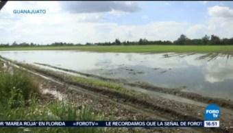 Autoridades Advierten Lluvias Guanajuato Extremar Precauciones Intensas Precipitaciones, Clima, Mal Tiempo