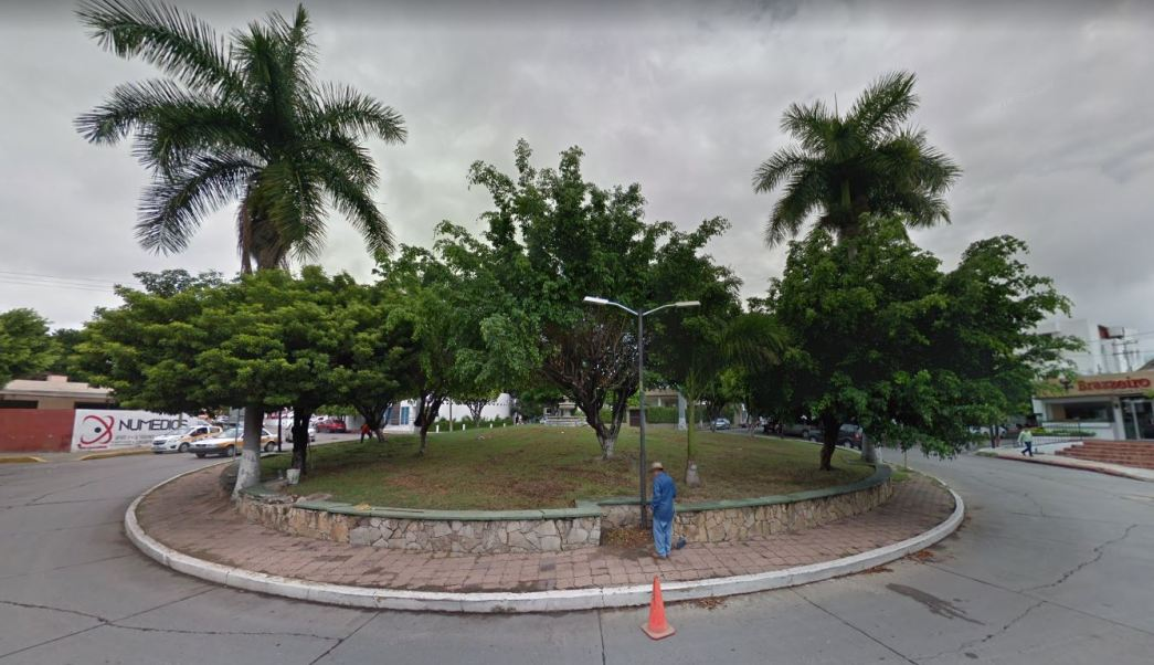 secretario medio ambiente tuxtla gutierrez ordena derribar arboles feo