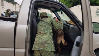 Cocaína asegurada en Chiapas, oculta en una camioneta