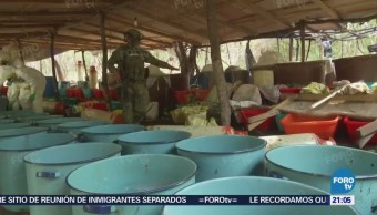 Cártel Sinaloa Marina Asegura 50 Toneladas de Crystal