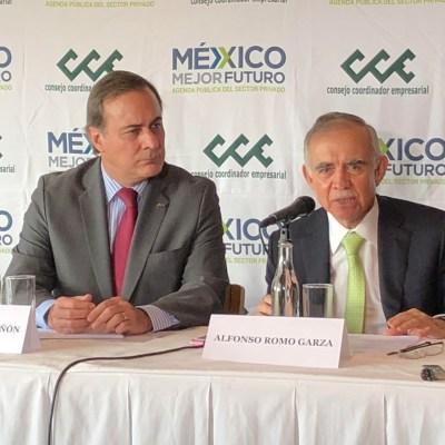 Empresarios no tendrán estímulos fiscales en 2019, dice Alfonso Romo
