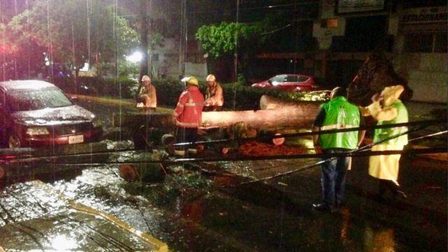 lluvias provocan inundaciones caida arboles rios oaxaca