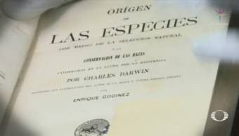 Subastan México Primera Edición El Origen Especies