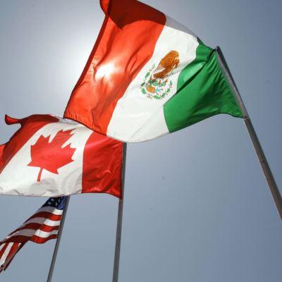 TLCAN: México gana, pero queremos que sea trilateral, dice Moisés Kalach
