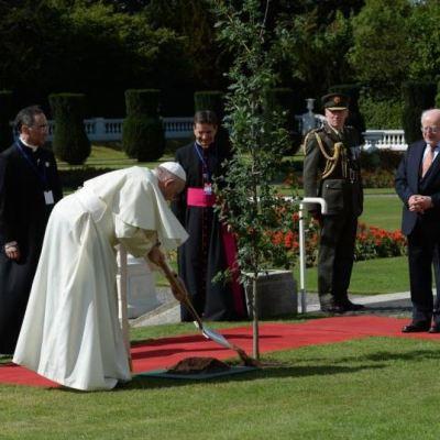Papa Francisco se reúne con presidente de Irlanda y planta árbol en Dublín