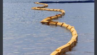 colocan barreras contra sargazo costas playa del carmen quintana roo