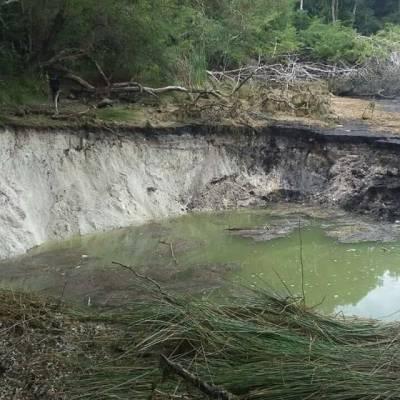 Socavones secan la laguna Chakanbakán en Quintana Roo