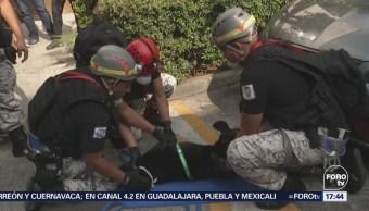 Simulacro Desalojo Animales Compañía Ciudad de México