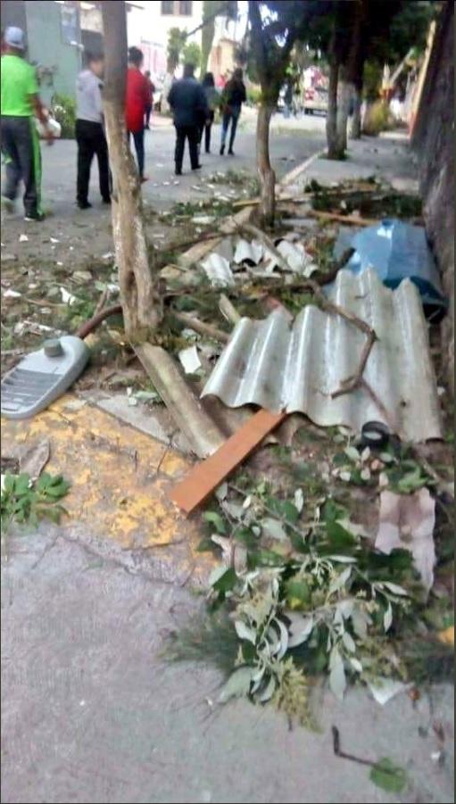 Tornado en San Martín de las Pirámides provoca caída de árboles