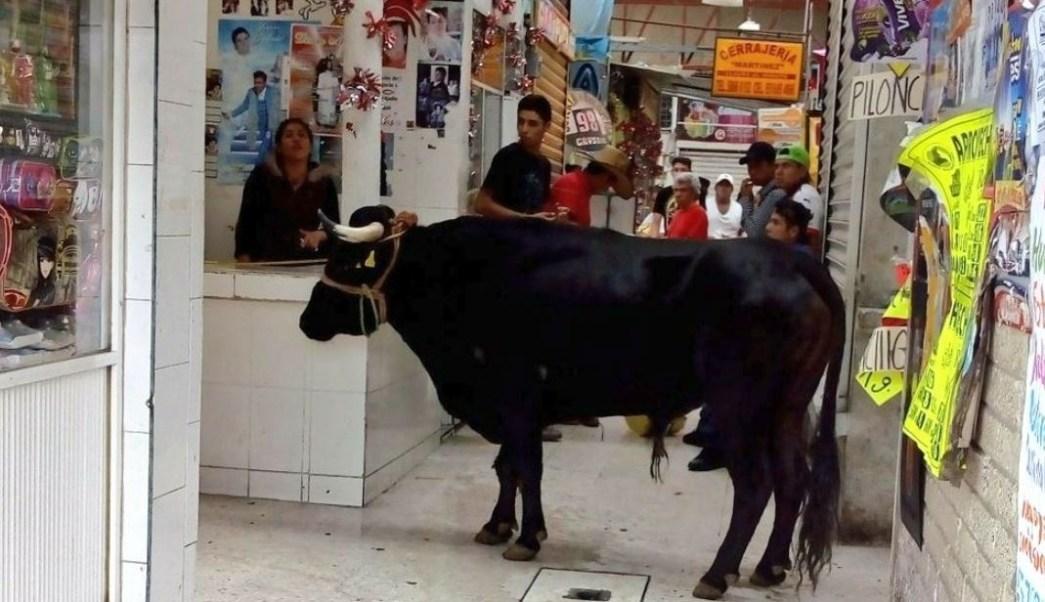 escapa toro y lesiona dos personas tlahuac
