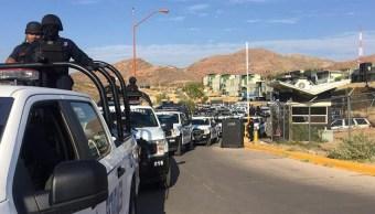 Enfrentamiento Chihuahua deja presunto delincuente muerto